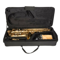 STEINHOFF KSO-AS10-GLD Advanced Student Alto Saxophone in Gold Lacquer with Case